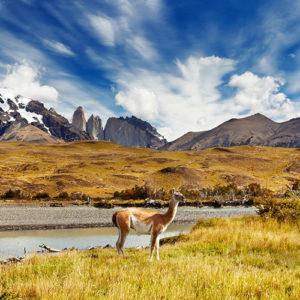 Patagonia Private